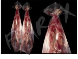 Cadaver Bags