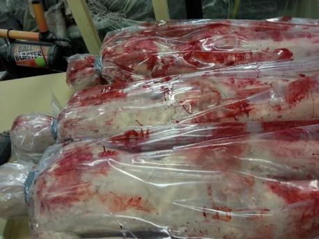 Three Female Bodies in Bags