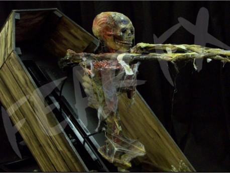 Coffin Leaper